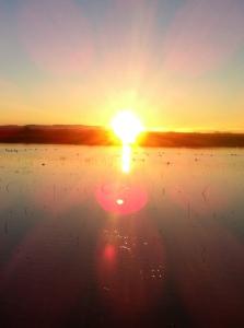 sunrise_bosquedelapache3